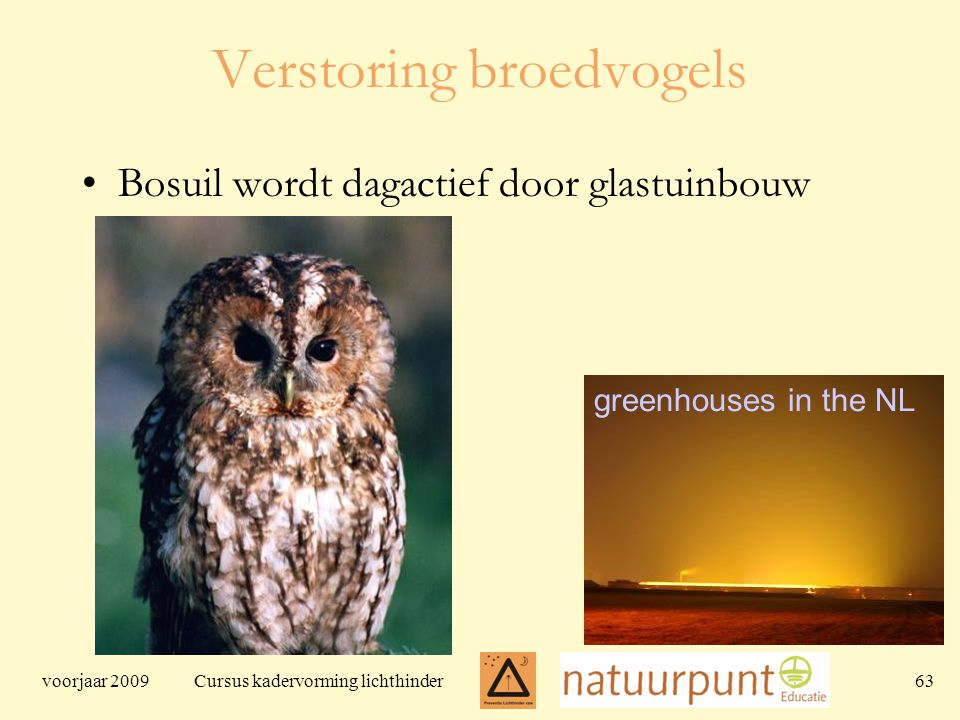 voorjaar 2009 Cursus kadervorming lichthinder 63 Verstoring broedvogels Bosuil wordt dagactief door glastuinbouw greenhouses in the NL