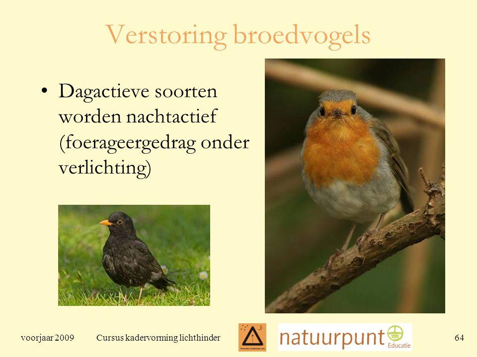 voorjaar 2009 Cursus kadervorming lichthinder 64 Verstoring broedvogels Dagactieve soorten worden nachtactief (foerageergedrag onder verlichting)