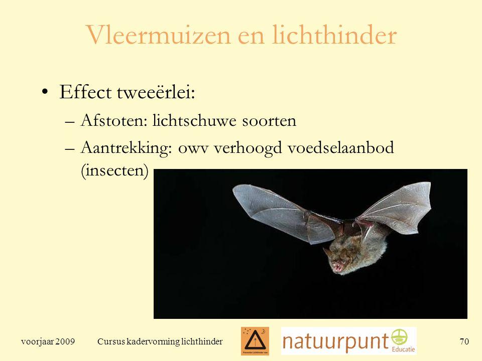 voorjaar 2009 Cursus kadervorming lichthinder 70 Vleermuizen en lichthinder Effect tweeërlei: –Afstoten: lichtschuwe soorten –Aantrekking: owv verhoogd voedselaanbod (insecten)