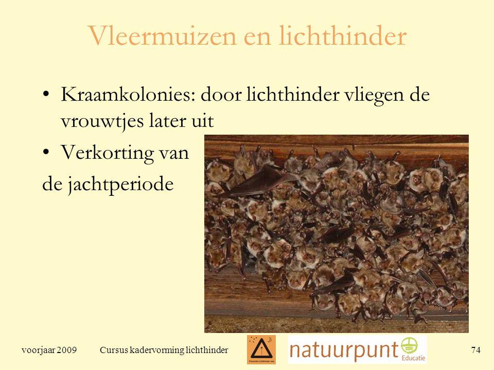 voorjaar 2009 Cursus kadervorming lichthinder 74 Vleermuizen en lichthinder Kraamkolonies: door lichthinder vliegen de vrouwtjes later uit Verkorting van de jachtperiode