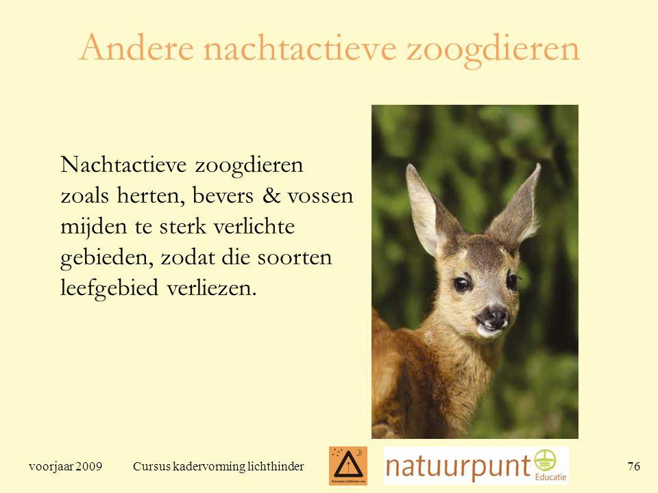 voorjaar 2009 Cursus kadervorming lichthinder 76 Andere nachtactieve zoogdieren Nachtactieve zoogdieren zoals herten, bevers & vossen mijden te sterk verlichte gebieden, zodat die soorten leefgebied verliezen.