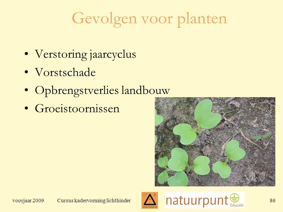 voorjaar 2009 Cursus kadervorming lichthinder 86 Gevolgen voor planten Verstoring jaarcyclus Vorstschade Opbrengstverlies landbouw Groeistoornissen