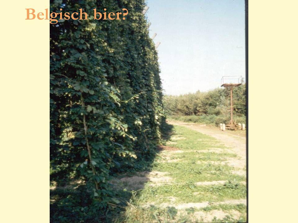 voorjaar 2009 Cursus kadervorming lichthinder 90 Belgisch bier?