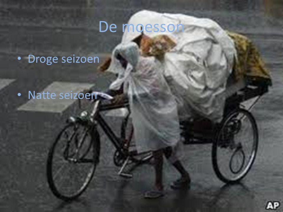 Droge wind en zware regens Natte seizoen Juli t/m Oktober Droge seizoen November t/m Juni