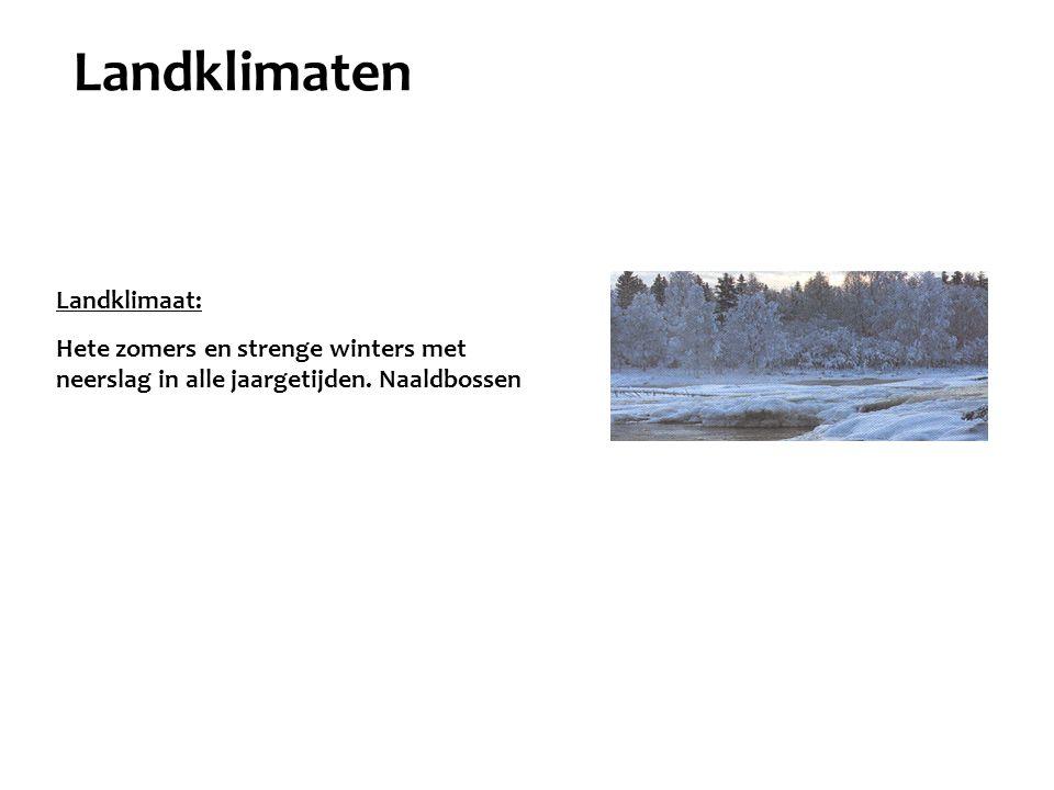 Landklimaat: Hete zomers en strenge winters met neerslag in alle jaargetijden. Naaldbossen Landklimaten