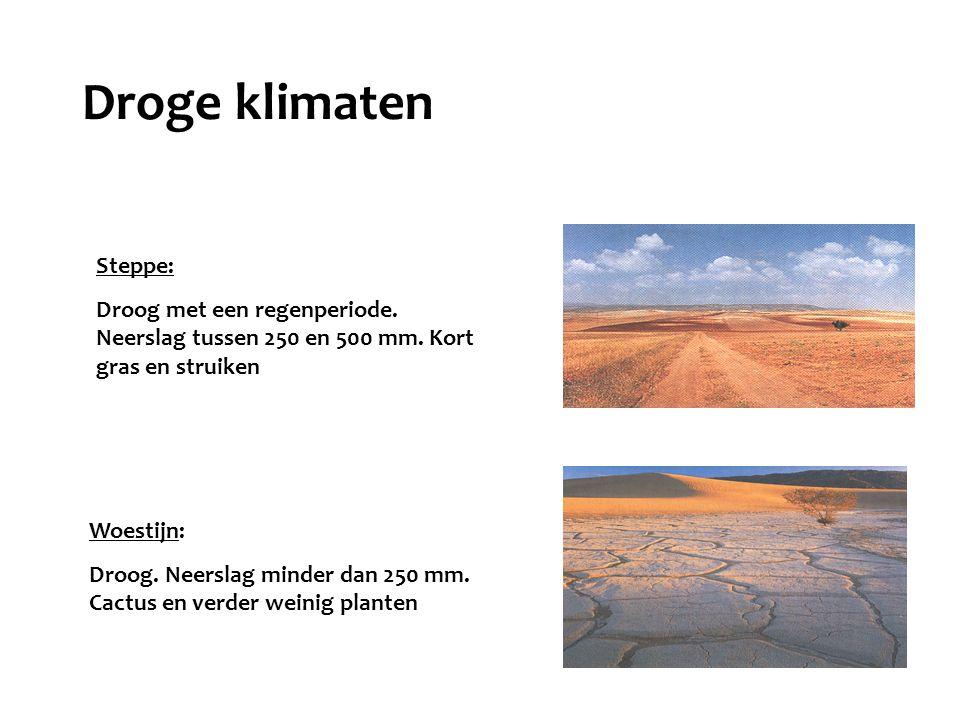 Steppe: Droog met een regenperiode. Neerslag tussen 250 en 500 mm. Kort gras en struiken Woestijn: Droog. Neerslag minder dan 250 mm. Cactus en verder