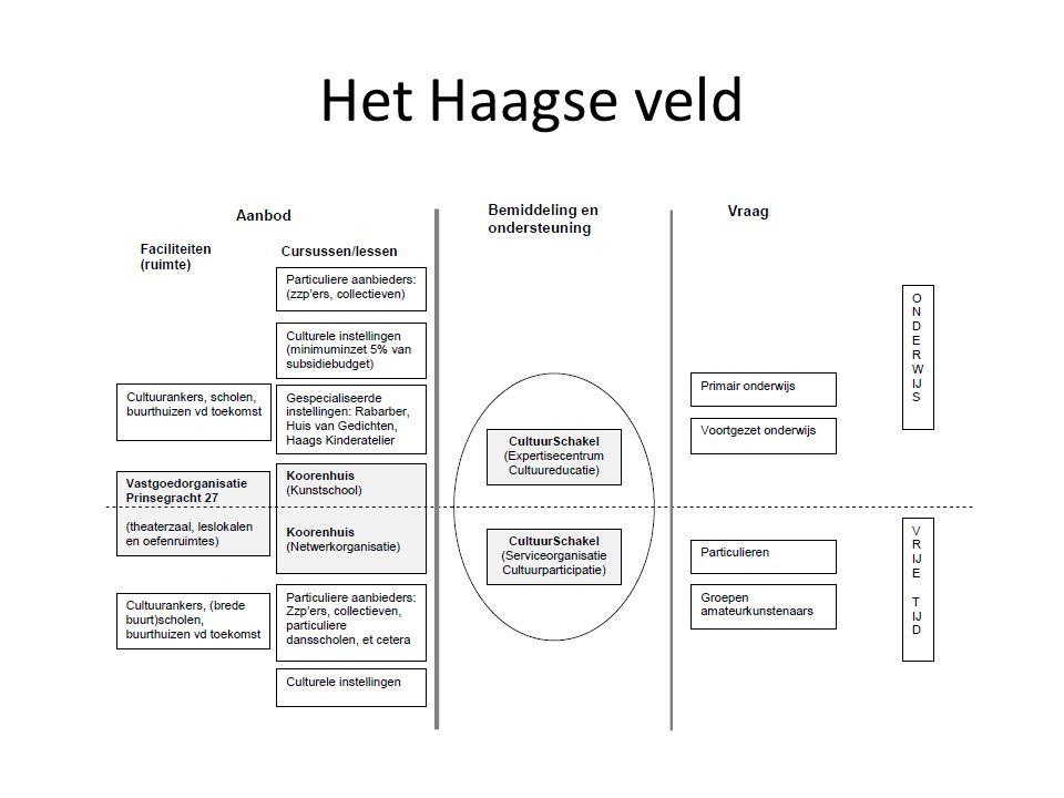 Cultuureducatie op z'n Haags Lesinhouden, projecten, lesmaterialen Vraag ontwikkelen