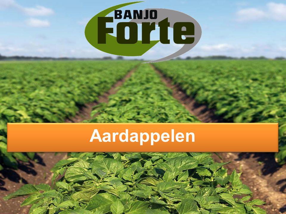 Pottenproef, PPO Lelystad, NL PPO Lelystad, mei 2012