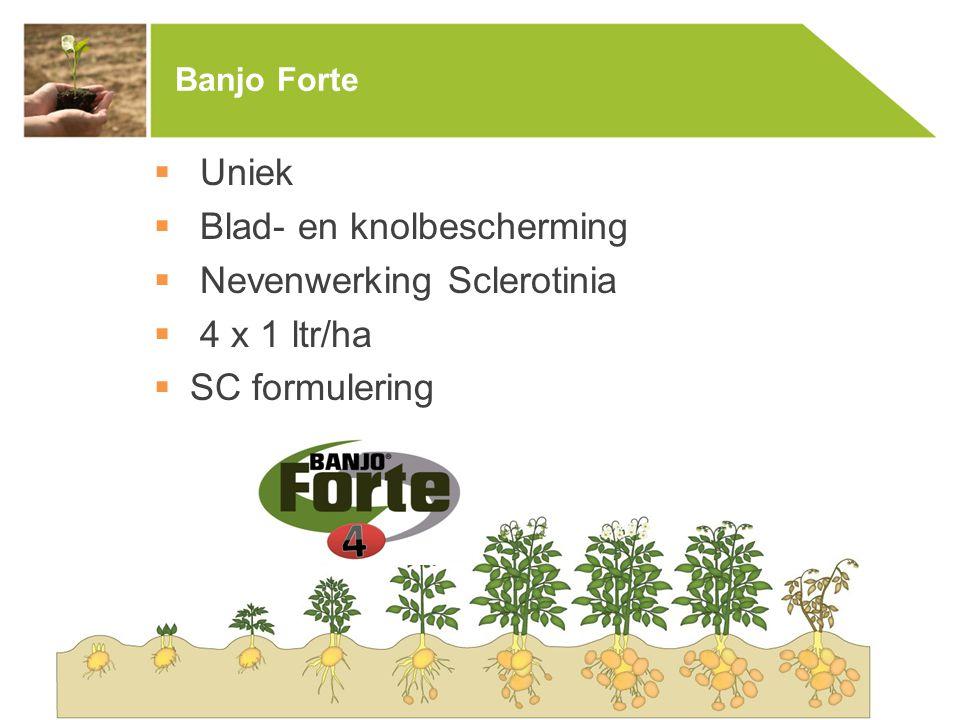 Banjo Forte  Uniek  Blad- en knolbescherming  Nevenwerking Sclerotinia  4 x 1 ltr/ha  SC formulering