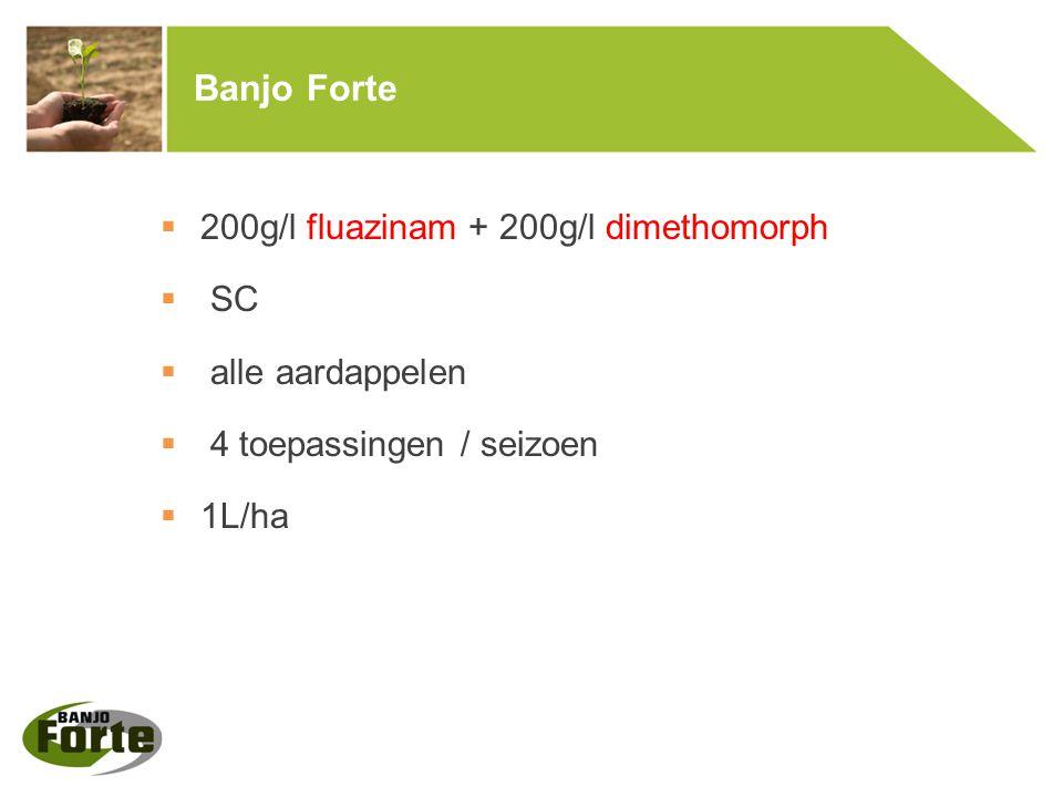 Banjo Forte  200g/l fluazinam + 200g/l dimethomorph  SC  alle aardappelen  4 toepassingen / seizoen  1L/ha