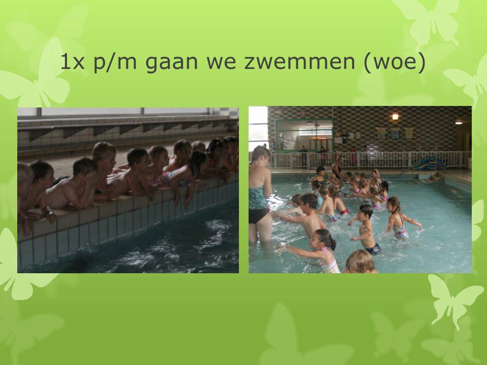 1x p/m gaan we zwemmen (woe)