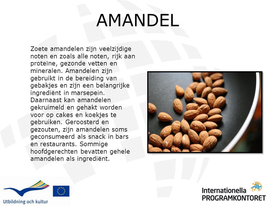 AMANDEL Zoete amandelen zijn veelzijdige noten en zoals alle noten, rijk aan proteïne, gezonde vetten en mineralen. Amandelen zijn gebruikt in de bere