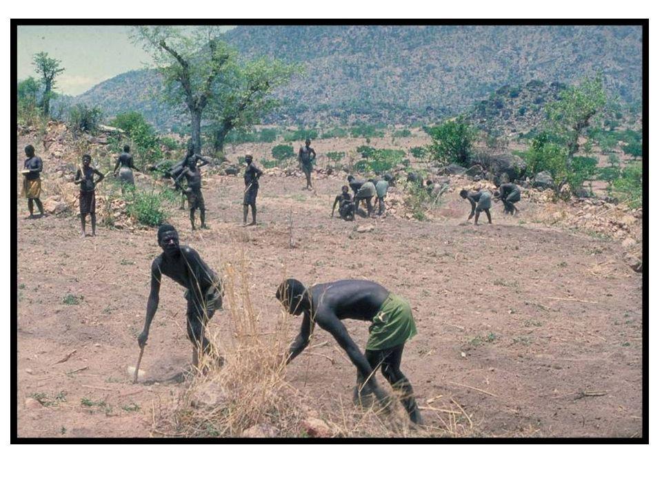 2 Omstandigheden voor landbouw 2.1 Fysische omstandigheden