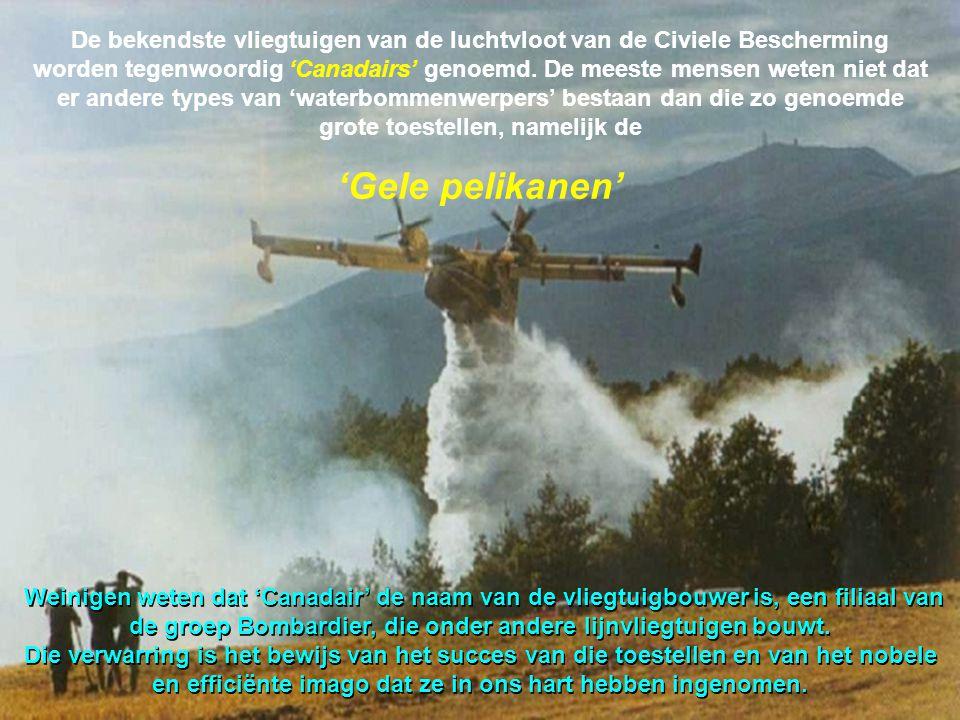 De bekendste vliegtuigen van de luchtvloot van de Civiele Bescherming worden tegenwoordig 'Canadairs' genoemd.