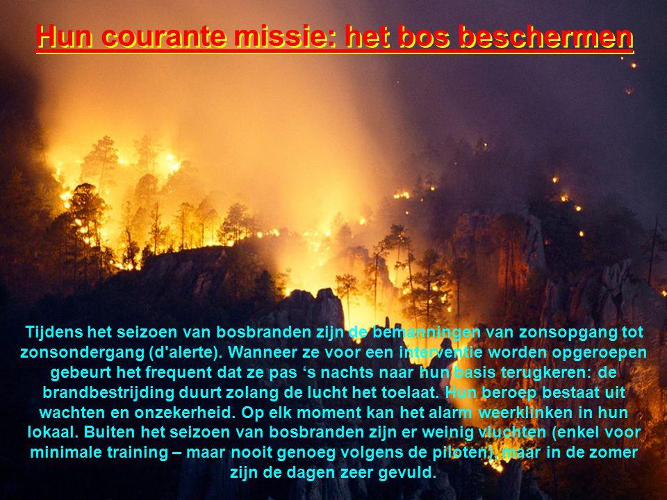 Hun courante missie: het bos beschermen Tijdens het seizoen van bosbranden zijn de bemanningen van zonsopgang tot zonsondergang (d alerte).