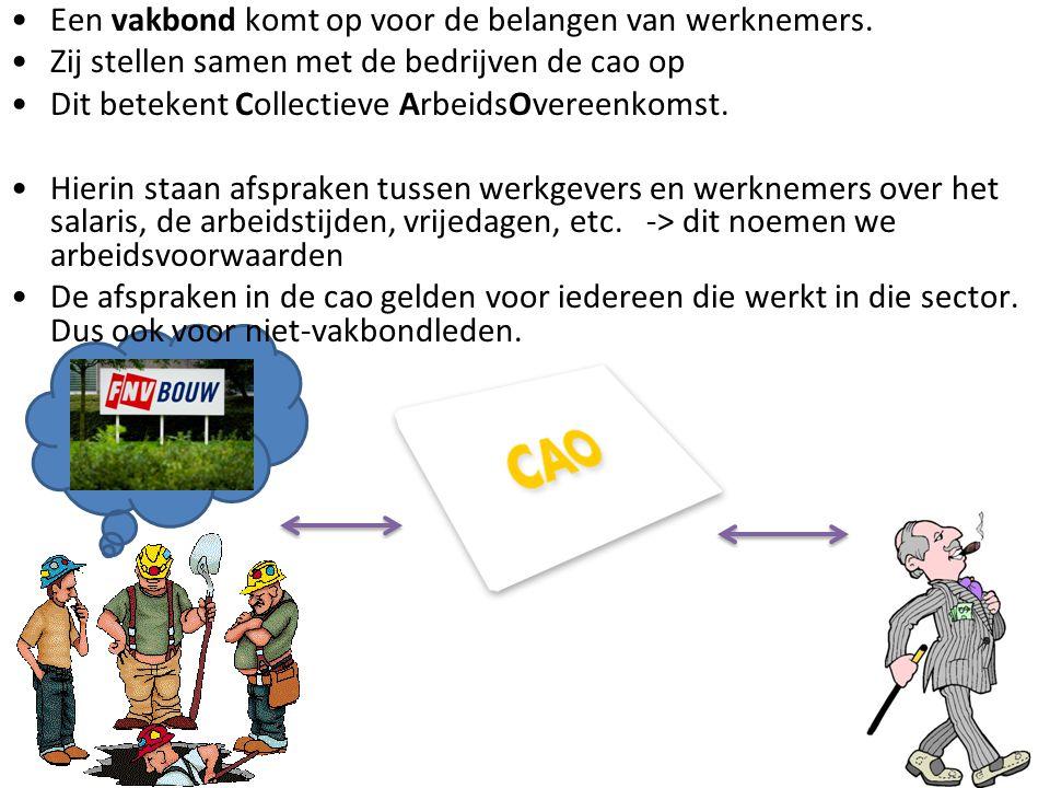 arbeidsovereenkomst Extra: Individuele arbeidsovereenkomst. Verplicht: CAO.