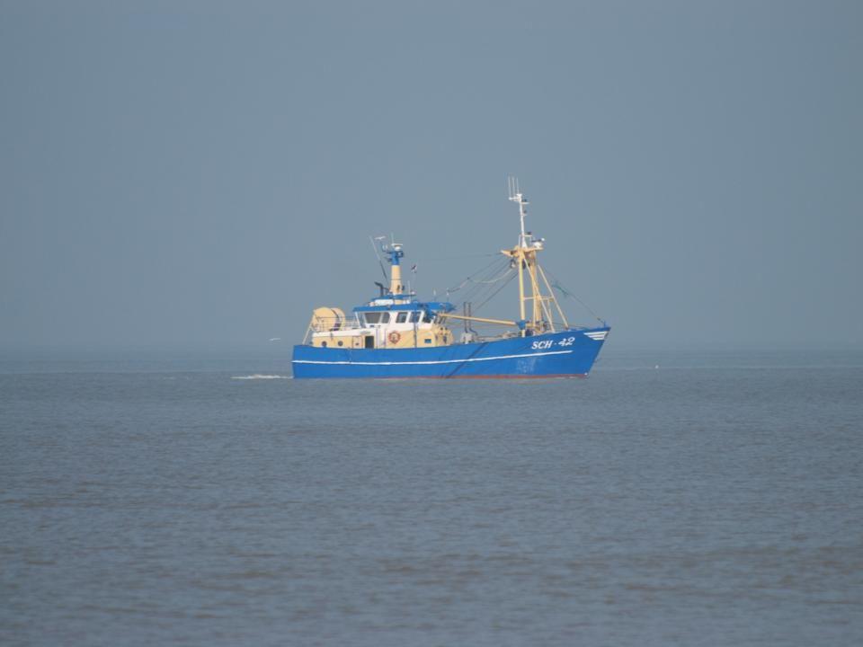 Een vissersboot was ter hoogte van de pier aan het vissen