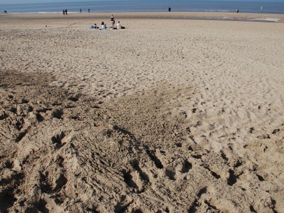 Er kwam een vliegtuigje vrij laag langs het strand vliegen