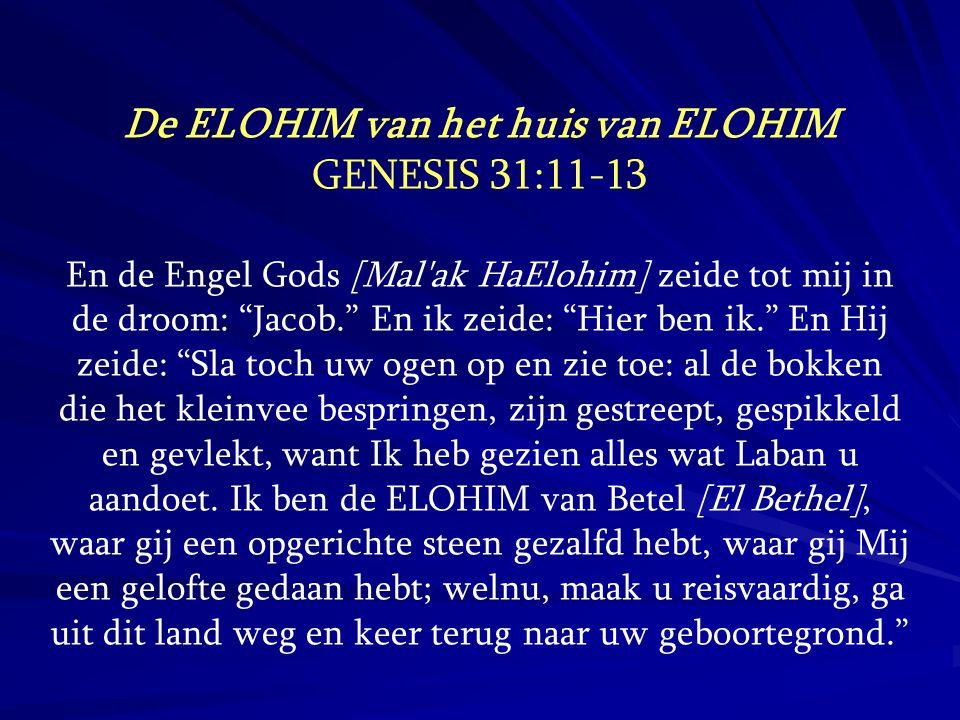 """De ELOHIM van het huis van ELOHIM GENESIS 31:11-13 En de Engel Gods [Mal'ak HaElohim] zeide tot mij in de droom: """"Jacob."""" En ik zeide: """"Hier ben ik."""""""
