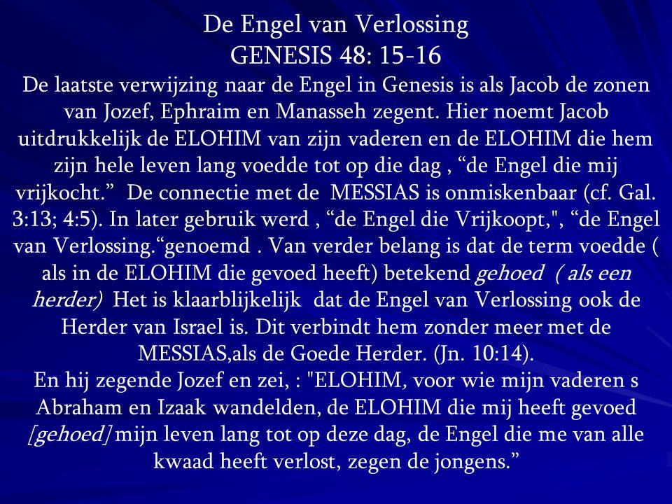 De Engel van Verlossing GENESIS 48: 15-16 De laatste verwijzing naar de Engel in Genesis is als Jacob de zonen van Jozef, Ephraim en Manasseh zegent.