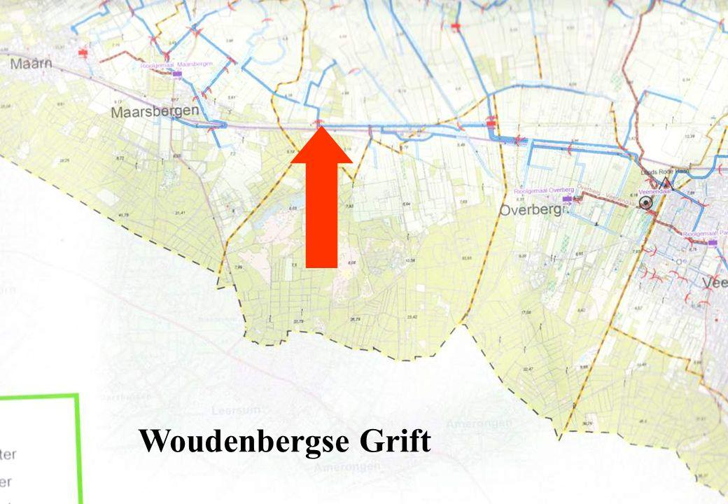 11 Woudenbergse Grift