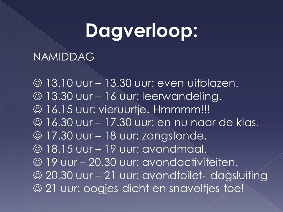 Dagverloop: AVONDACTIVITEITEN  verwerking leerwandelingen  knutselen  dagboekje  spelletjesavond  zang, spel,...