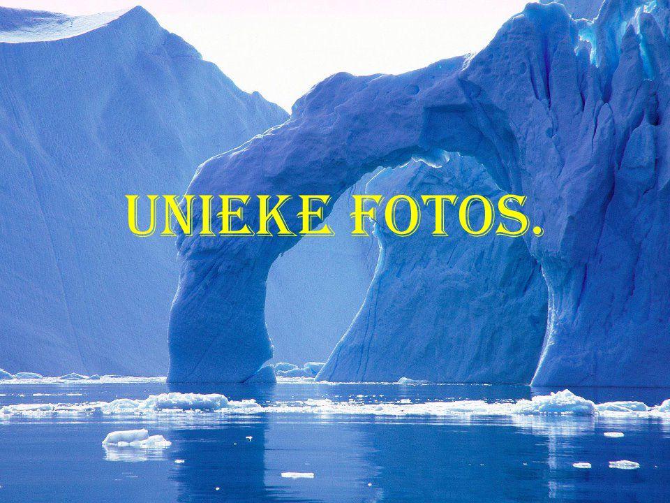 Unieke fotos.