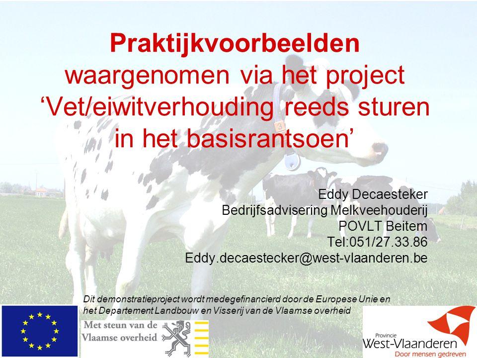 Praktijkvoorbeelden waargenomen via het project 'Vet/eiwitverhouding reeds sturen in het basisrantsoen' Eddy Decaesteker Bedrijfsadvisering Melkveehou