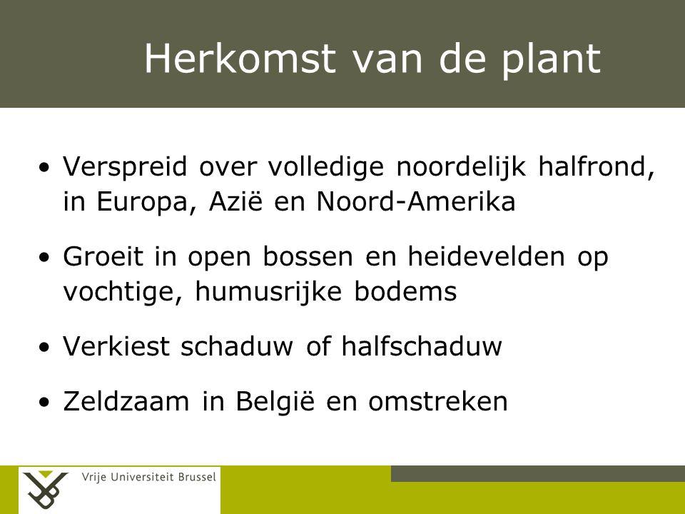 Pag. Herkomst van de plant Verspreid over volledige noordelijk halfrond, in Europa, Azië en Noord-Amerika Groeit in open bossen en heidevelden op voch