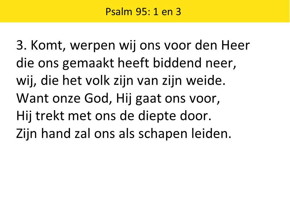 3. Komt, werpen wij ons voor den Heer die ons gemaakt heeft biddend neer, wij, die het volk zijn van zijn weide. Want onze God, Hij gaat ons voor, Hij