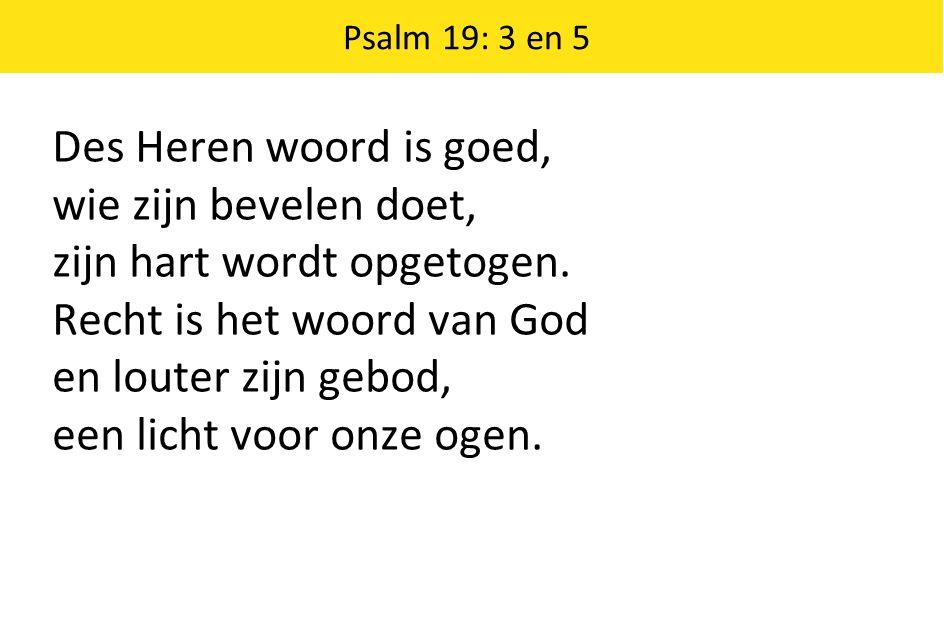 Des Heren woord is goed, wie zijn bevelen doet, zijn hart wordt opgetogen. Recht is het woord van God en louter zijn gebod, een licht voor onze ogen.