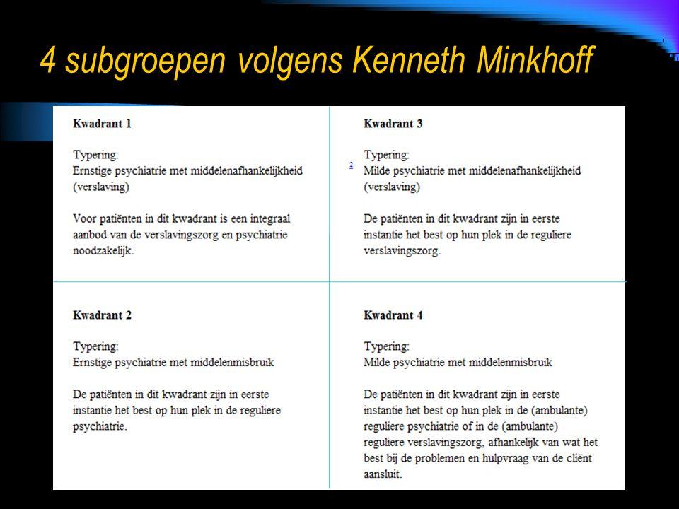 4 subgroepen volgens Kenneth Minkhoff