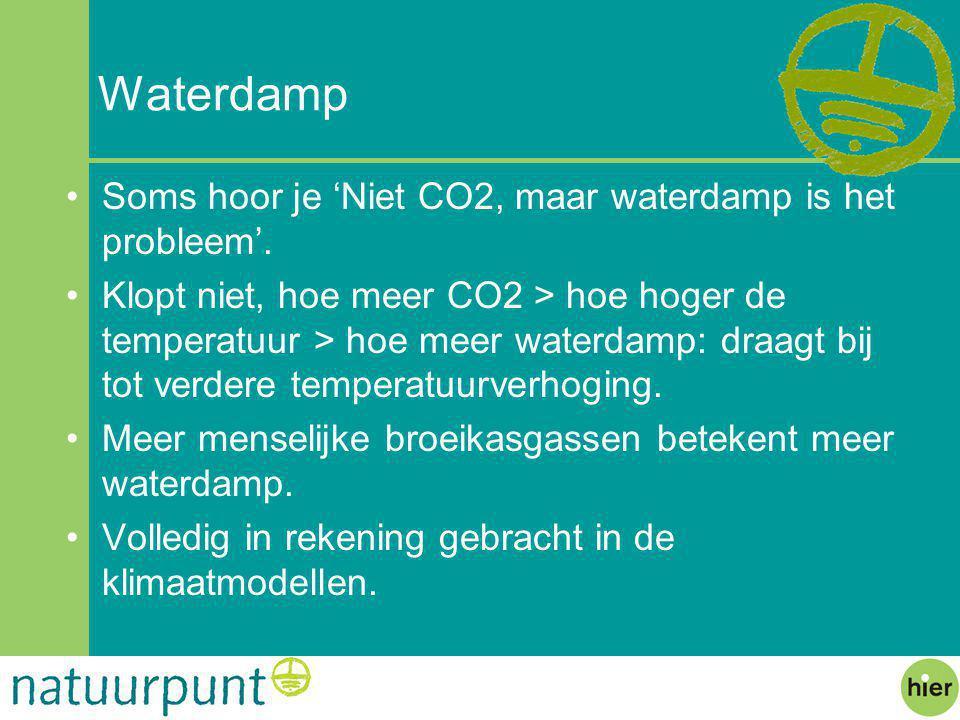 Waterdamp Soms hoor je 'Niet CO2, maar waterdamp is het probleem'.