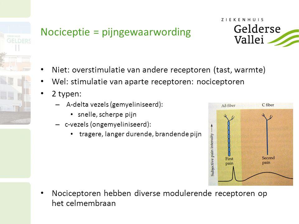 Nociceptie = pijngewaarwording Niet: overstimulatie van andere receptoren (tast, warmte) Wel: stimulatie van aparte receptoren: nociceptoren 2 typen: