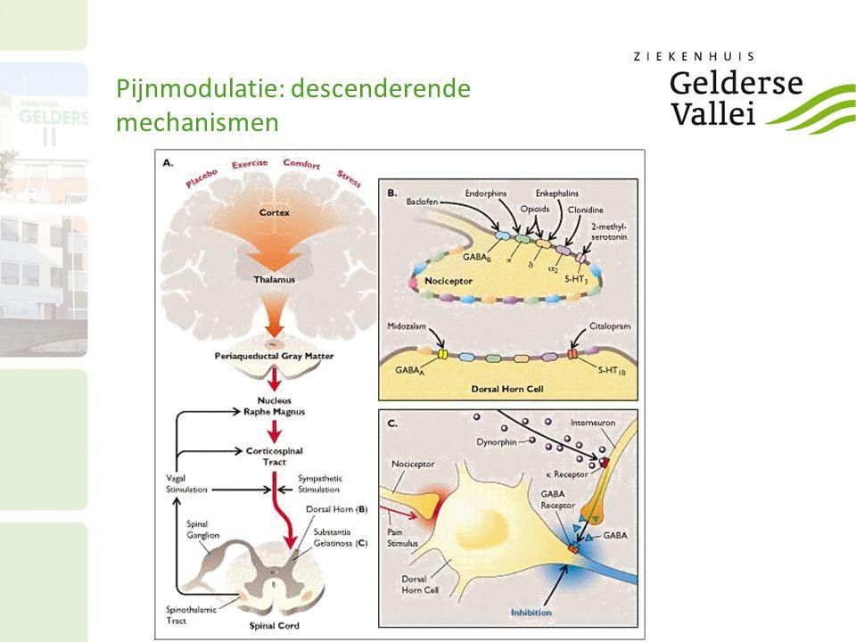 Pijnmodulatie: descenderende mechanismen