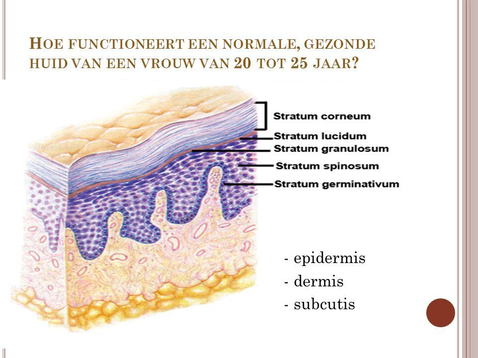 H OE FUNCTIONEERT EEN NORMALE, GEZONDE HUID VAN EEN VROUW VAN 20 TOT 25 JAAR ? - epidermis - dermis - subcutis