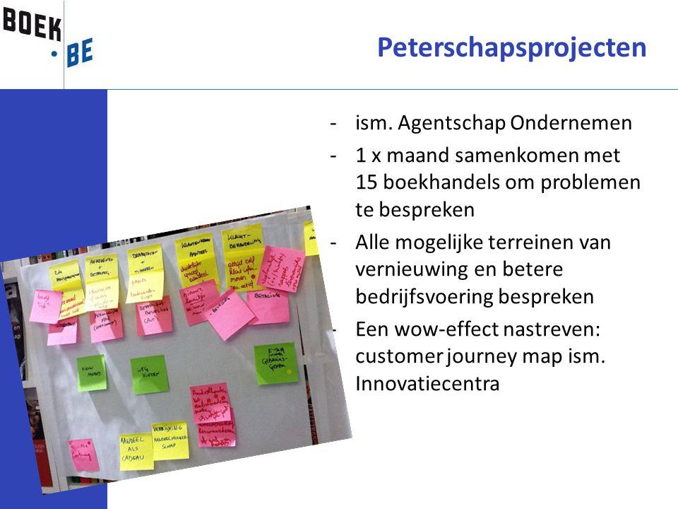 Peterschapsprojecten -ism. Agentschap Ondernemen -1 x maand samenkomen met 15 boekhandels om problemen te bespreken -Alle mogelijke terreinen van vern