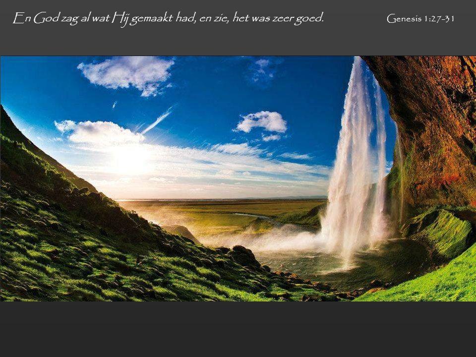 En God zag al wat Hij gemaakt had, en zie, het was zeer goed. Genesis 1:27-31