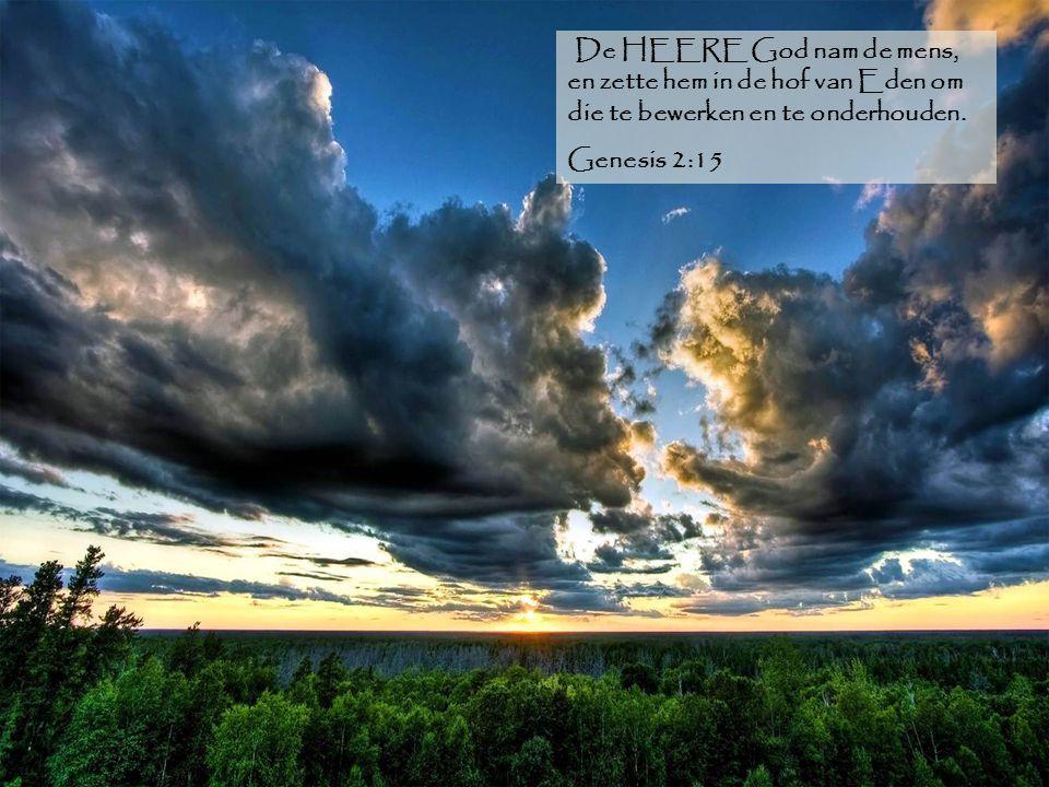 De HEERE God nam de mens, en zette hem in de hof van Eden om die te bewerken en te onderhouden. Genesis 2:15