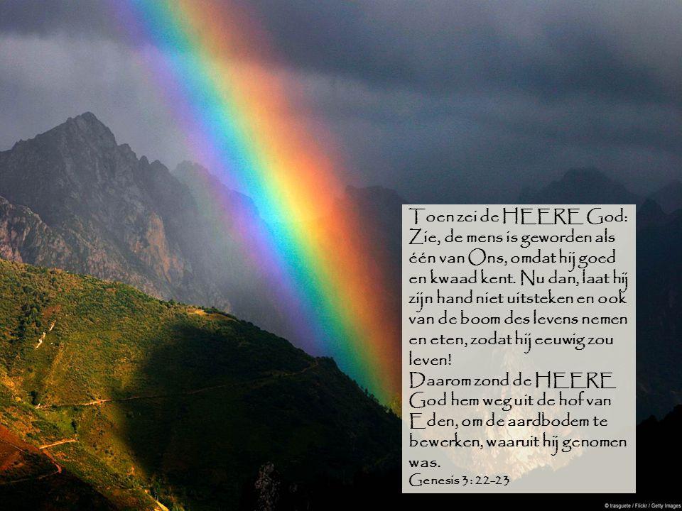 Toen zei de HEERE God: Zie, de mens is geworden als één van Ons, omdat hij goed en kwaad kent. Nu dan, laat hij zijn hand niet uitsteken en ook van de