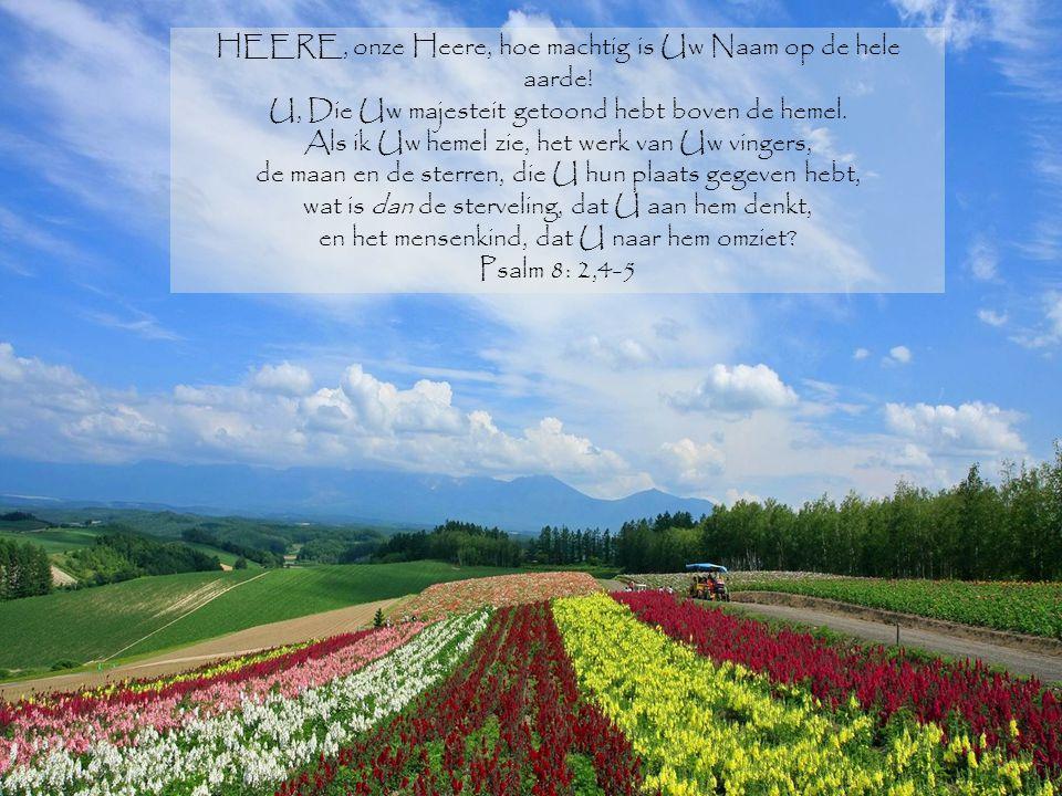 HEERE, onze Heere, hoe machtig is Uw Naam op de hele aarde! U, Die Uw majesteit getoond hebt boven de hemel. Als ik Uw hemel zie, het werk van Uw ving