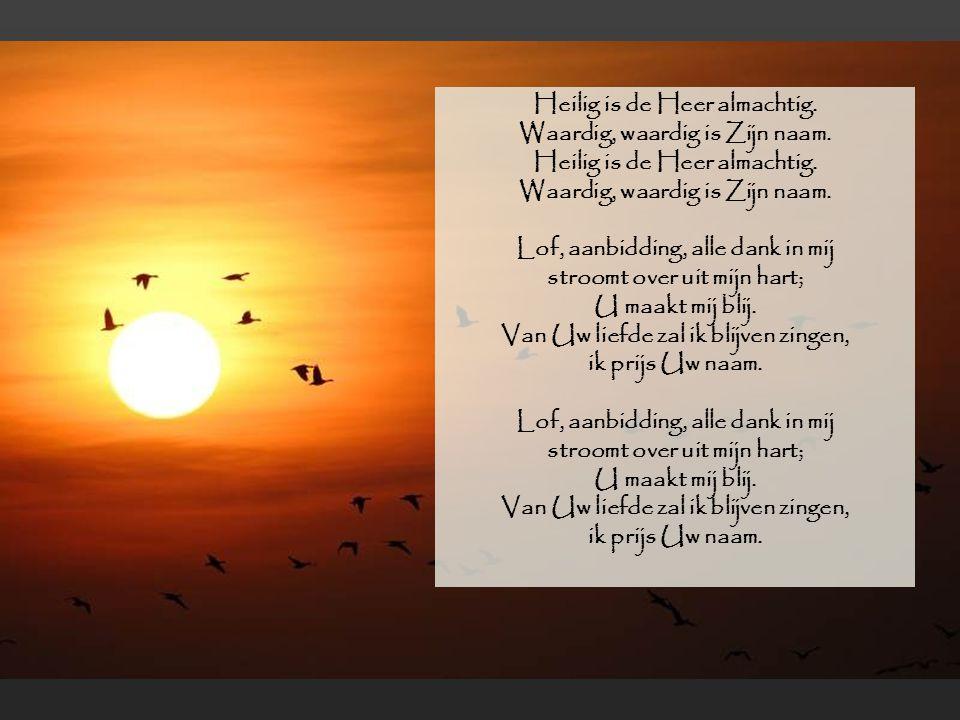 Heilig is de Heer almachtig. Waardig, waardig is Zijn naam. Lof, aanbidding, alle dank in mij stroomt over uit mijn hart; U maakt mij blij. Van Uw lie