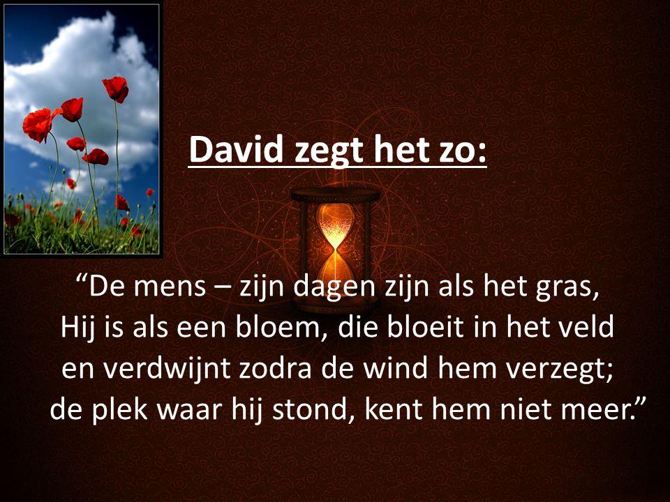 """David zegt het zo: """"De mens – zijn dagen zijn als het gras, Hij is als een bloem, die bloeit in het veld en verdwijnt zodra de wind hem verzegt; de pl"""