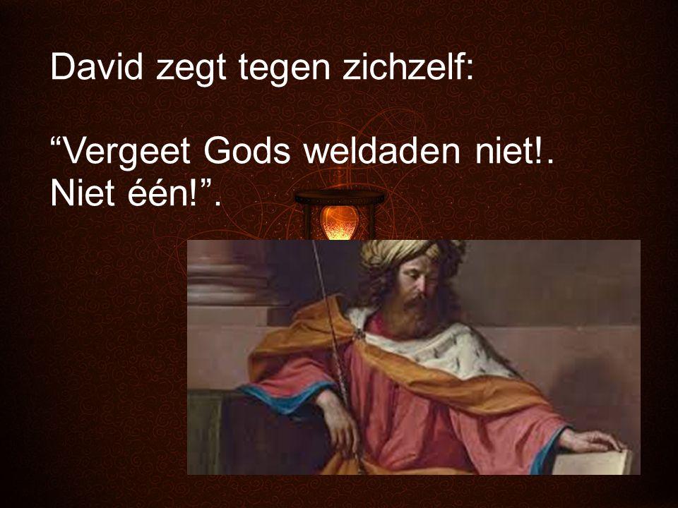 """David zegt tegen zichzelf: """"Vergeet Gods weldaden niet!. Niet één!""""."""