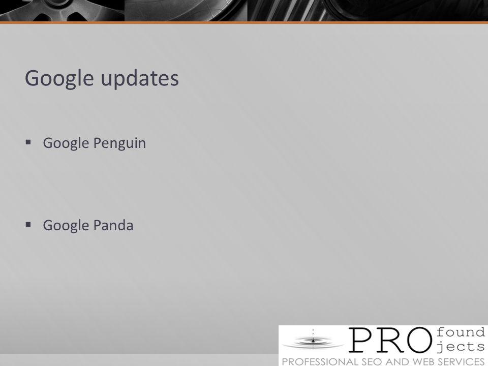 Google updates  Google Penguin  Google Panda