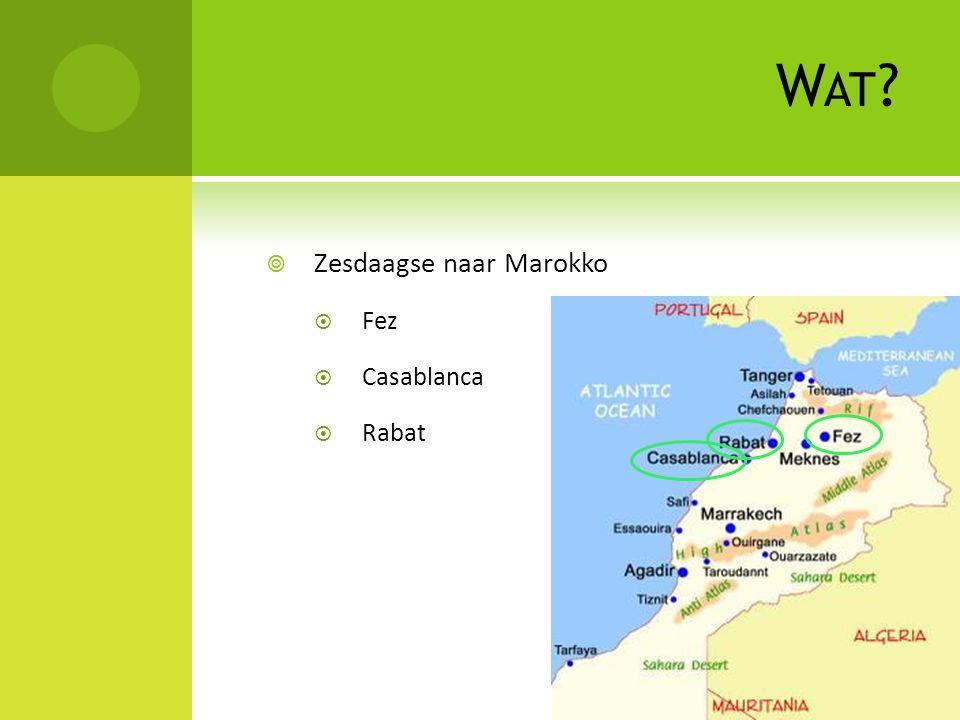 W AT  Zesdaagse naar Marokko  Fez  Casablanca  Rabat