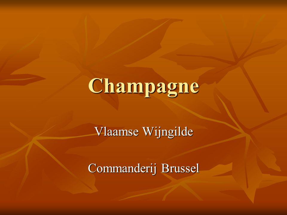 Champagne Vlaamse Wijngilde Commanderij Brussel