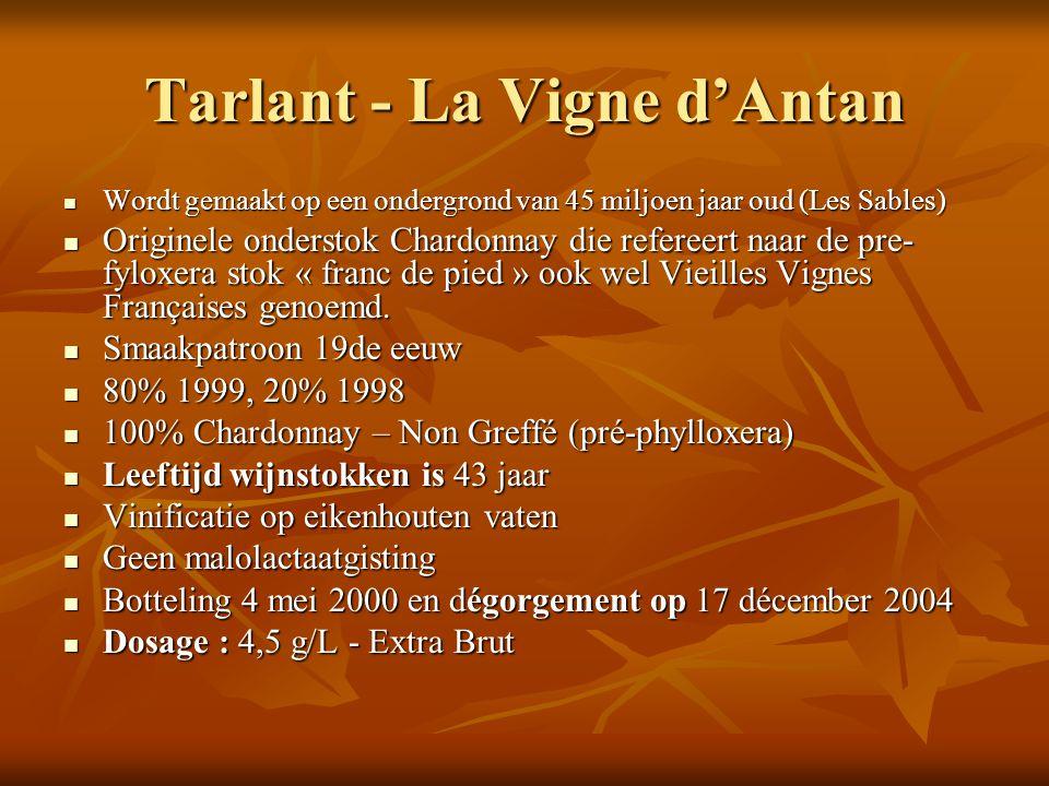 Tarlant - La Vigne d'Antan Wordt gemaakt op een ondergrond van 45 miljoen jaar oud (Les Sables) Wordt gemaakt op een ondergrond van 45 miljoen jaar ou