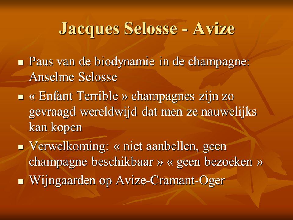 Jacques Selosse - Avize Paus van de biodynamie in de champagne: Anselme Selosse Paus van de biodynamie in de champagne: Anselme Selosse « Enfant Terri