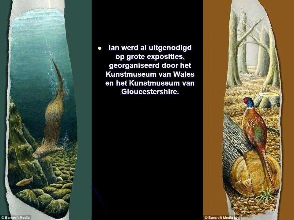 Ian werd al uitgenodigd op grote exposities, georganiseerd door het Kunstmuseum van Wales en het Kunstmuseum van Gloucestershire.